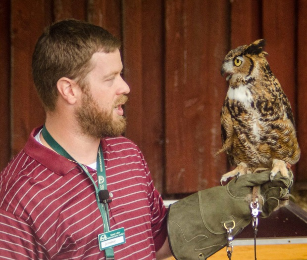 squam lakes presenter with great horned owl by Kate Wilcox